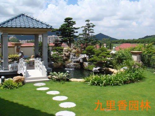 广州植物养护